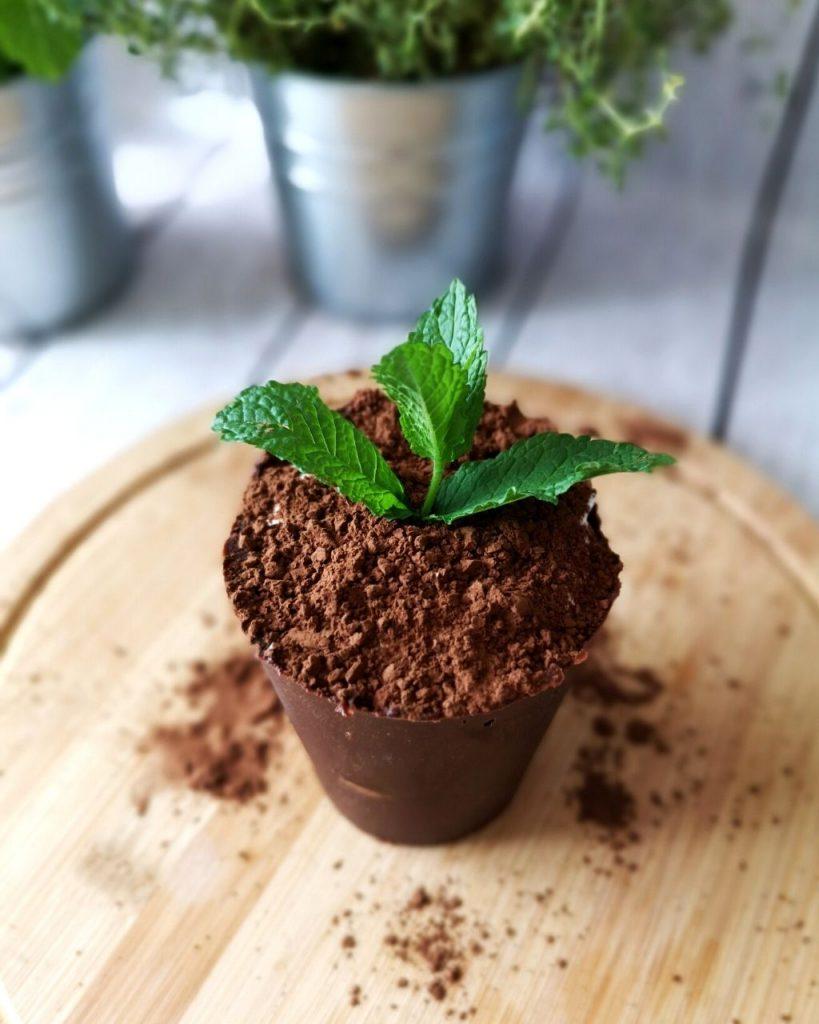 Jak zrobić doniczkę z czekolady?